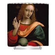 Saviour Of The World Shower Curtain by Giovanni Pedrini Giampietrino