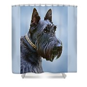 Scottish Terrier Dog Shower Curtain by Jennie Marie Schell