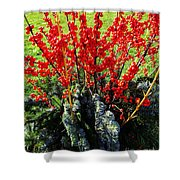 Seasons Greetings Shower Curtain by Xueling Zou