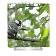 Second Glance Shower Curtain by Angie Rea