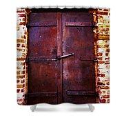 Secret Door Shower Curtain by Cheryl Young