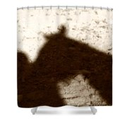 Shadow of Horse and Girl Shower Curtain by Angela Rath