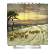 Sheep in the Snow Shower Curtain by Joseph Farquharson