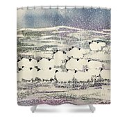 Sheep In Winter Shower Curtain by Suzi Kennett