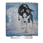 Siberian Husky Run Shower Curtain by Lee Ann Shepard