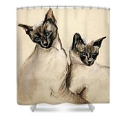 Sibling Love Shower Curtain by Cori Solomon