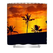 Silhouetted Golfer Shower Curtain by Dana Edmunds - Printscapes