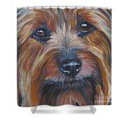 Silky Terrier Shower Curtain by Lee Ann Shepard
