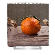 Simple Things - Antagonism Shower Curtain by Nailia Schwarz