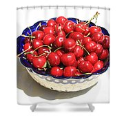 Simply a Bowl of Cherries Shower Curtain by Carol Groenen