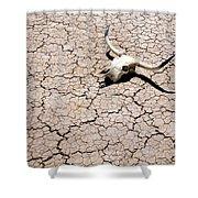Skull In Desert 2 Shower Curtain by Kelley King