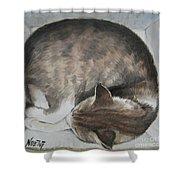 Sleeping Kitty Shower Curtain by Jindra Noewi