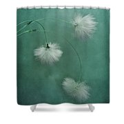 Sleepy Heads Shower Curtain by Priska Wettstein