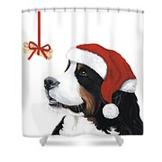 Smile Its Christmas Shower Curtain by Liane Weyers