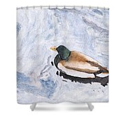 Snake Lake Duck Sketch Shower Curtain by Ken Powers