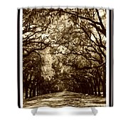 Southern Welcome In Sepia Shower Curtain by Carol Groenen