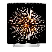 Spider Ball Shower Curtain by Phill Doherty