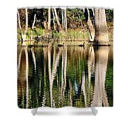 Spot the Swan Family Shower Curtain by Kaye Menner