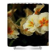 Spring Floral Shower Curtain by David Lane