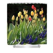 Spring Garden Shower Curtain by Carol Groenen
