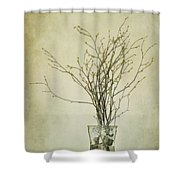 Spring Unfolds Shower Curtain by Priska Wettstein