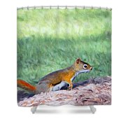 Squirrel In The Park Shower Curtain by Jeff Kolker