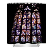 Stain Glass Window Shower Curtain by Madeline Ellis