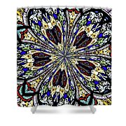 Stained Glass Kaleidoscope 38 Shower Curtain by Rose Santuci-Sofranko