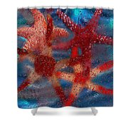 Starfish Shower Curtain by Jack Zulli