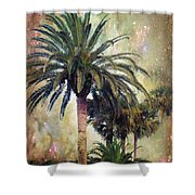 Starry Evening In St. Augustine Shower Curtain by Jan Amiss Photography