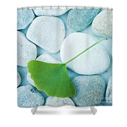 Stones And A Gingko Leaf Shower Curtain by Priska Wettstein