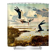 Storks II Shower Curtain by Henryk Gorecki