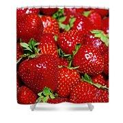 Strawberries Shower Curtain by Carlos Caetano