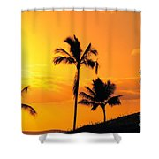 Stretching At Sunset Shower Curtain by Dana Edmunds - Printscapes