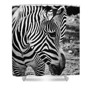 Stripes Shower Curtain by Saija  Lehtonen