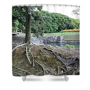 Strong Roots in Japan Shower Curtain by Carol Groenen