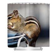 Stuff It In Shower Curtain by Karol  Livote