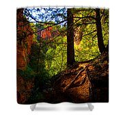 Subway Forest Shower Curtain by Chad Dutson