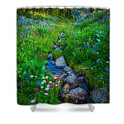 Summer Creek Shower Curtain by Inge Johnsson