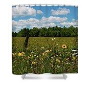 Summer Dreams... Shower Curtain by Nina Stavlund
