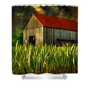 Summer Storm Shower Curtain by Lois Bryan
