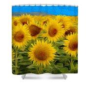 Sunflowers in the Field Shower Curtain by Jeff Kolker