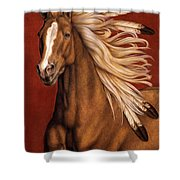 Sunhorse Shower Curtain by Pat Erickson