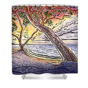 Sunset At Anaehoomalu Bay Shower Curtain by Fay Biegun - Printscapes