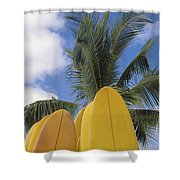 Surfboard Concession Shower Curtain by Bob Abraham - Printscapes