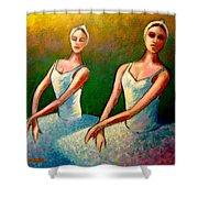 Swan Lake I Shower Curtain by John  Nolan