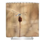 Sweet Solitude Shower Curtain by Carol Groenen