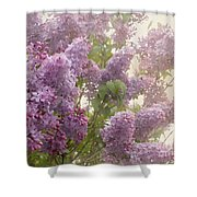 Swimming In A Sea Of Lilacs Shower Curtain by Cindy Garber Iverson