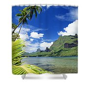 Tahiti, Moorea Shower Curtain by Joe Carini - Printscapes