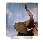Talking Elephant Shower Curtain by Marilyn Hunt